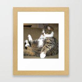 Mr. Cat Framed Art Print
