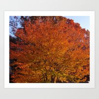 Autumn in the Hudson Valley, New York Art Print