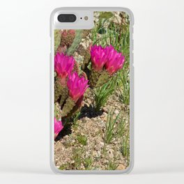 Beavertail Cactus in Bloom Clear iPhone Case