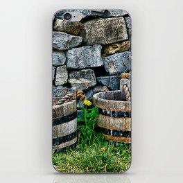Buckets and Rocks iPhone Skin