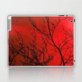 Bare Beech Laptop & iPad Skin