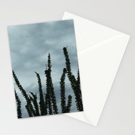 Ocotillo Sky No. 1 Stationery Cards