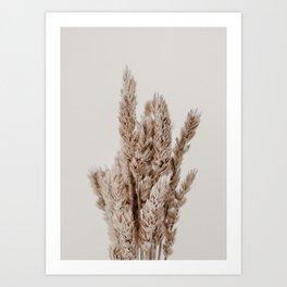 Botanical Dried Lagurus Grass Art Print