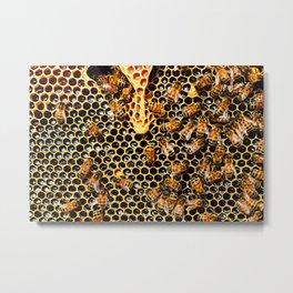 Sweet Honey Harvest Metal Print