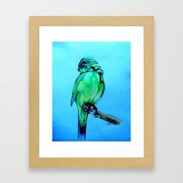 Kakariki - The NZ Red-Crowned Parakeet Framed Art Print