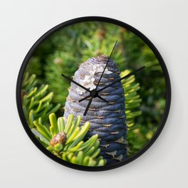 Coniferous tree branch Wall Clock