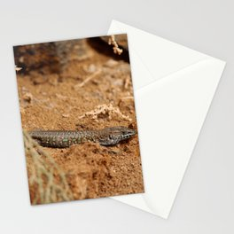 Haria Lizard 2 Stationery Cards