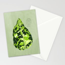 Aglaonema Pictum Tricolor Stationery Cards
