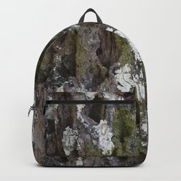 Old tree with character Backpack