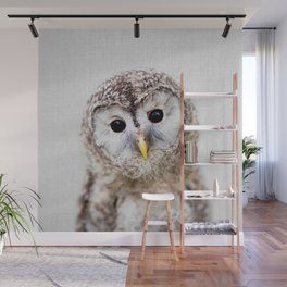 Baby Owl - Colorful Wall Mural