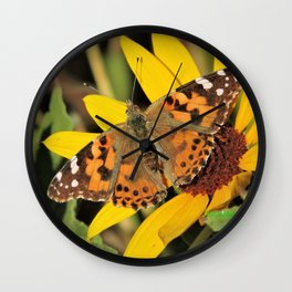 A Painted Lady Sunning on Desert Sunflower Wall Clock