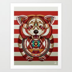 Red Panda by Giulio Rossi Art Print