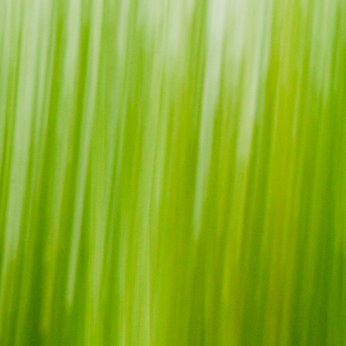 Grass wipe --- Gras-Wusch Leggings