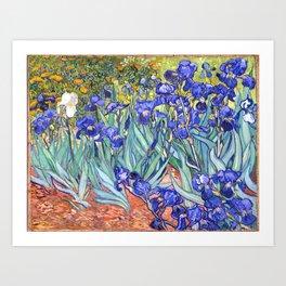 Vincent Van Gogh Irises Art Print