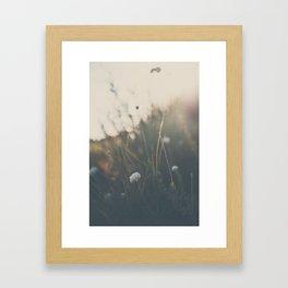 buckwheat ... Framed Art Print