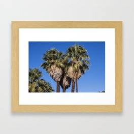 I Love Palm Springs Framed Art Print