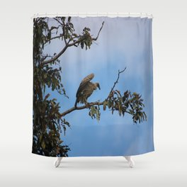 Vulture on start Shower Curtain