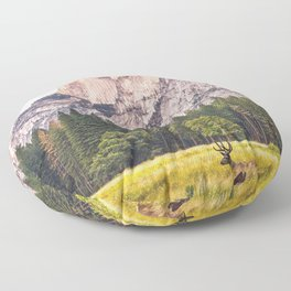 Mountain National Park Floor Pillow
