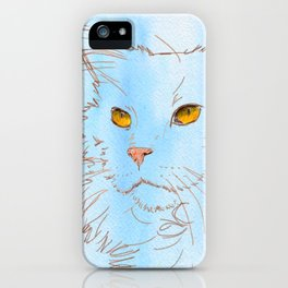Magnificent Maine Coon iPhone Case