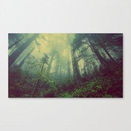 Fey Forest Canvas Print