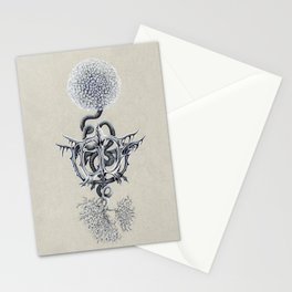 Cat Toy Bone Flower Stationery Cards