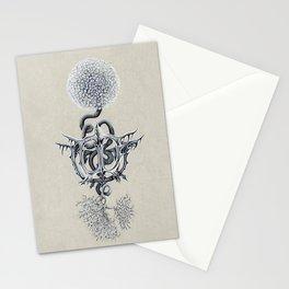 Cat Toy Bone Flower Stationery Cards