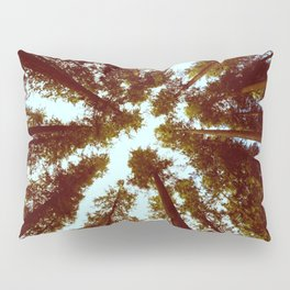 Forest Sky Vintage Trees Pillow Sham
