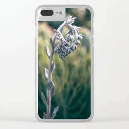 Morning In The Succulent Garden #4 Clear iPhone Case