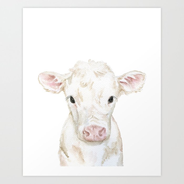 Baby White Cow Calf Watercolor Farm Animal Art Print By