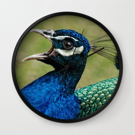 Peacock Mating Call Wall Clock