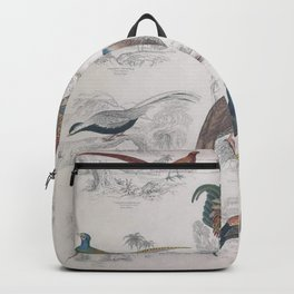 Gall Birds, 225 Backpack