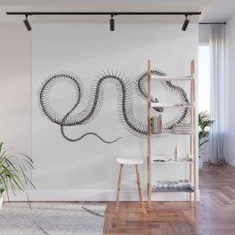 Snake skeleton Wall Mural