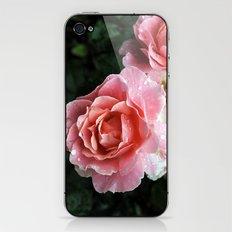 Dewdrop Roses iPhone & iPod Skin