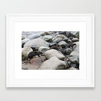 otters Framed Art Prints featuring Wild otters by Joni