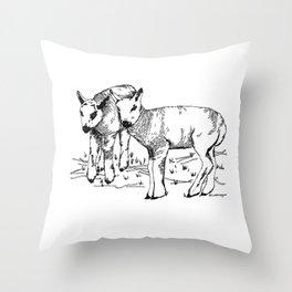 Spring Dartmoor Lambs Throw Pillow