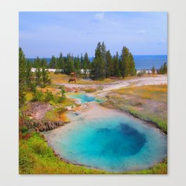 The Beauty of Yellowstone Canvas Print