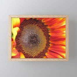 Sunflower from the Color Fashion Mix Framed Mini Art Print