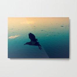 Dusky Seagull. Metal Print