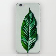 Green Leaf 1 iPhone & iPod Skin