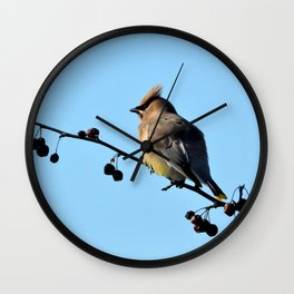 Waxwing on a Winter's Day Wall Clock