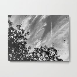 300 | west texas Metal Print