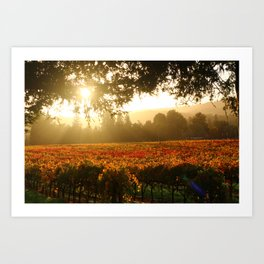 Autumn in Wine Country Art Print