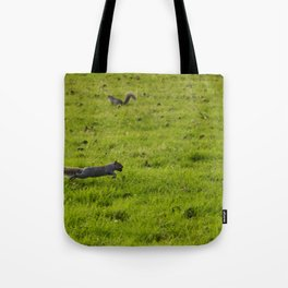 Bouncing squirrels Tote Bag