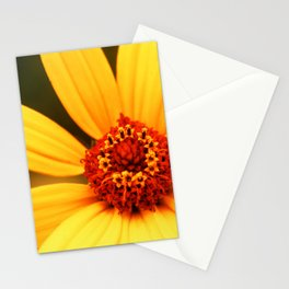 Flower Macro 2 Stationery Cards