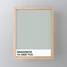 snakebite Framed Mini Art Print