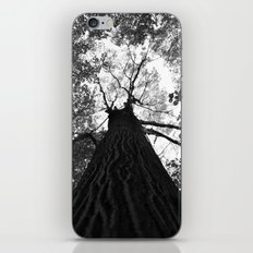 Forest black and white 17 iPhone & iPod Skin
