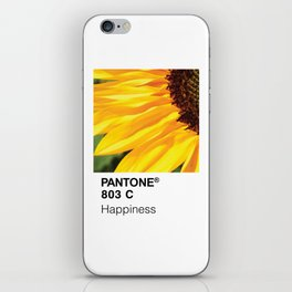 Color Swatch - Happiness iPhone Skin