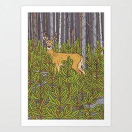 Buck & Pine Art Print