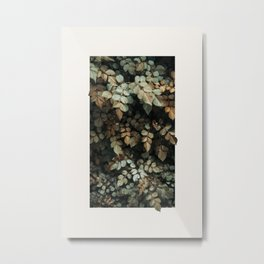 Growth (Autumn) Metal Print