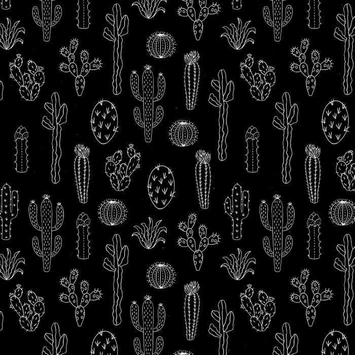 Cactus Silhouette White And Black Comforters